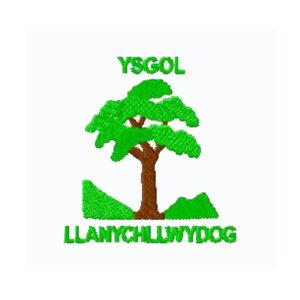 Llanychllwdog School